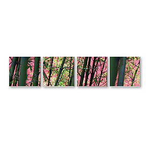 Split Canvas Print - 3pcs 16